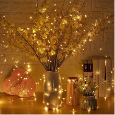 Warm White Colour Fairy Lights Led String Lights 33 Feet Long